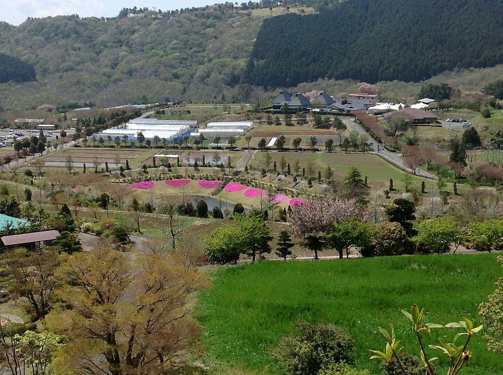O-hito Farm