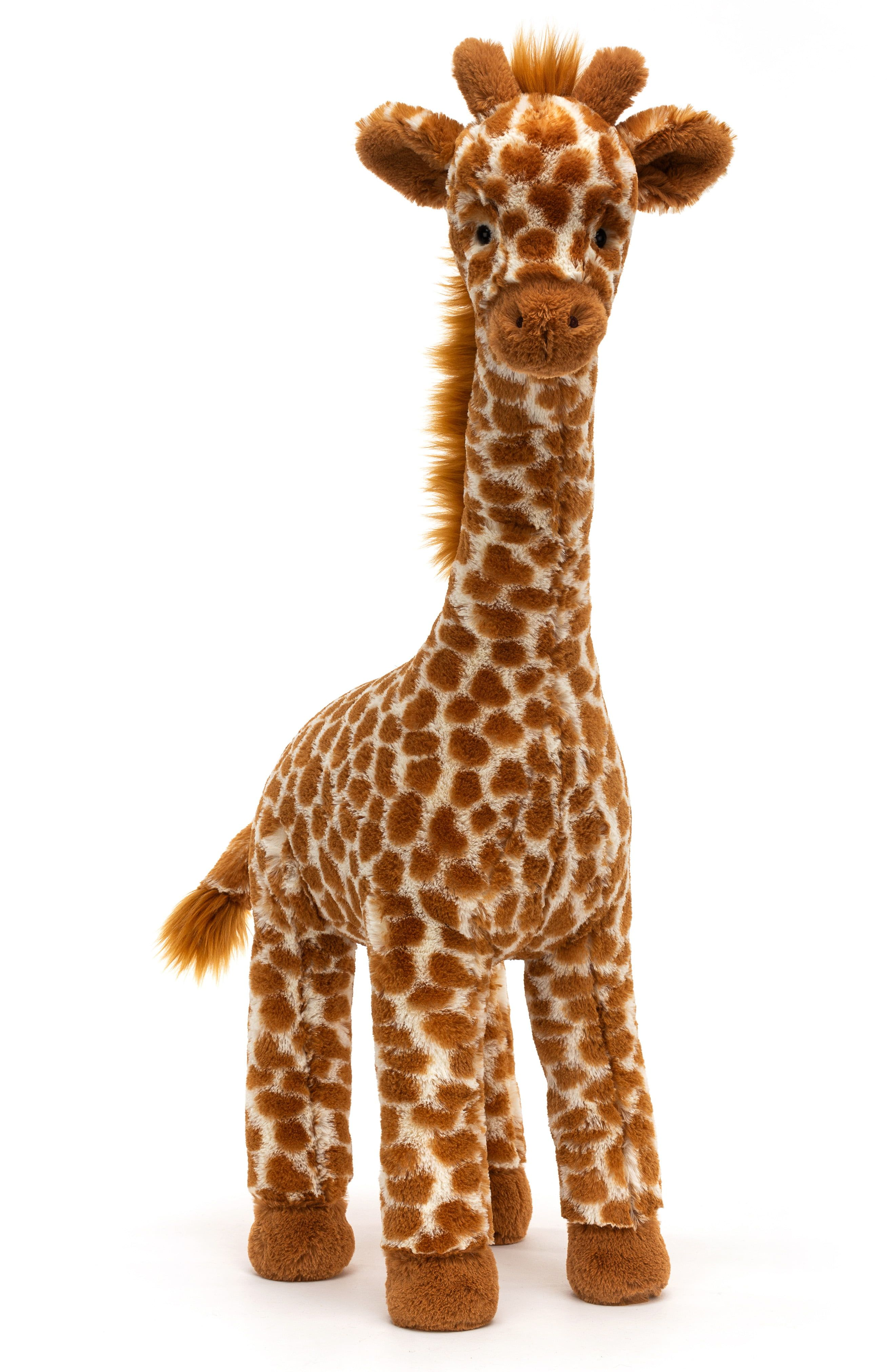 Jellycat Dakota Tall Giraffe Stuffed Animal Nordstrom Tall Giraffe Stuffed Animal Giraffe Stuffed Animal Giraffe Plush [ 4048 x 2640 Pixel ]