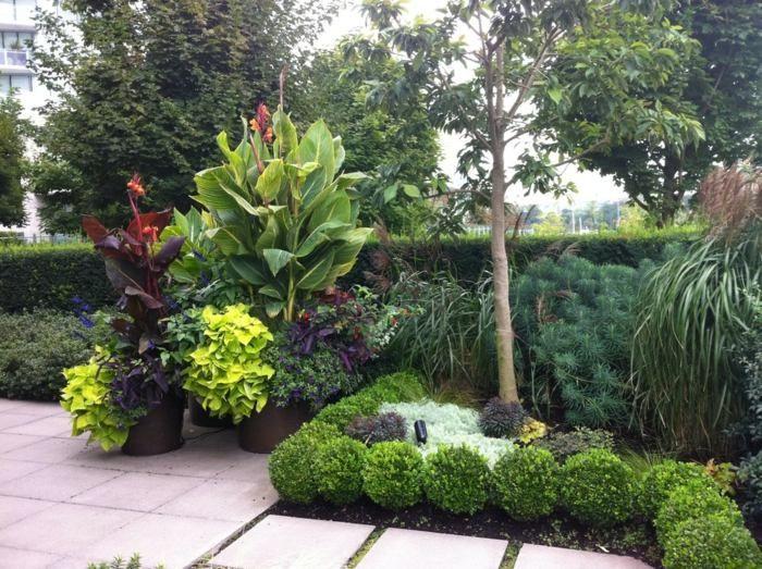 Im Garten tropische Akzente mit tropischen Pflanzen im Blumentopf ...
