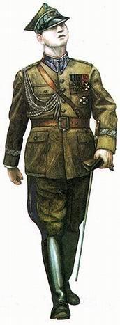 Polish solider.