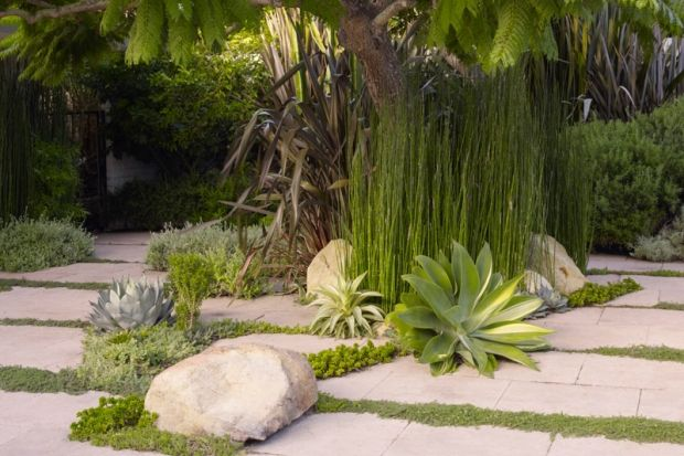 1000+ images about Modern take on the Garden on Pinterest ...
