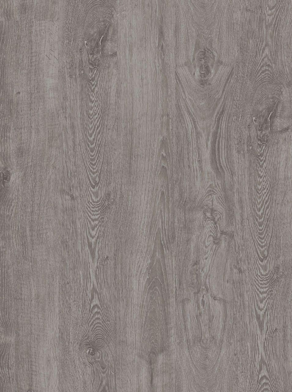 Gray Walnut Wood Texture