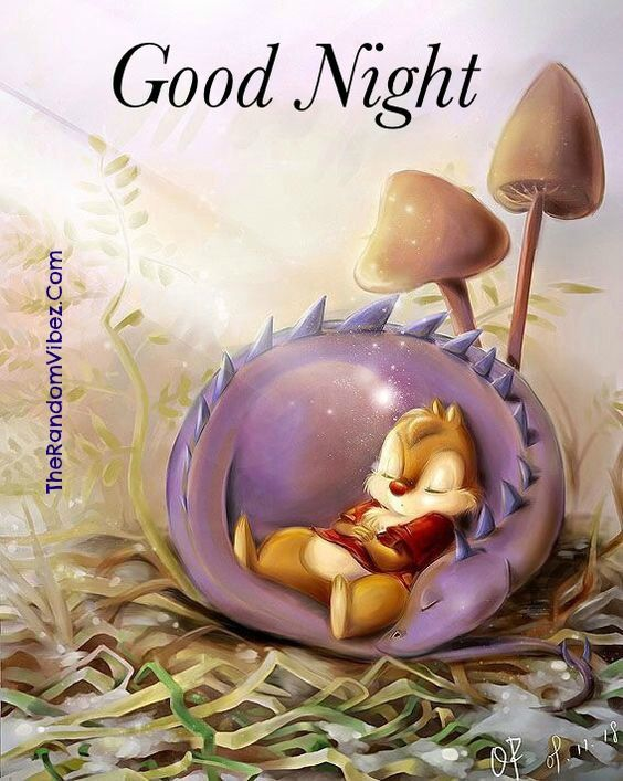 Good Night Meme Cute : night, Hilarious, Night, Memes,, Images, Image,, Sweet, Dreams,, Messages