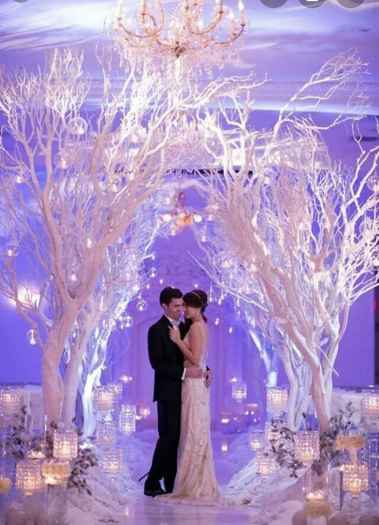 Pin by 👑Maria Glamour👑 on Wed   Winter wonderland wedding ...