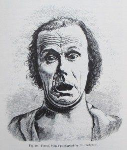 Darwin emotion experiment online