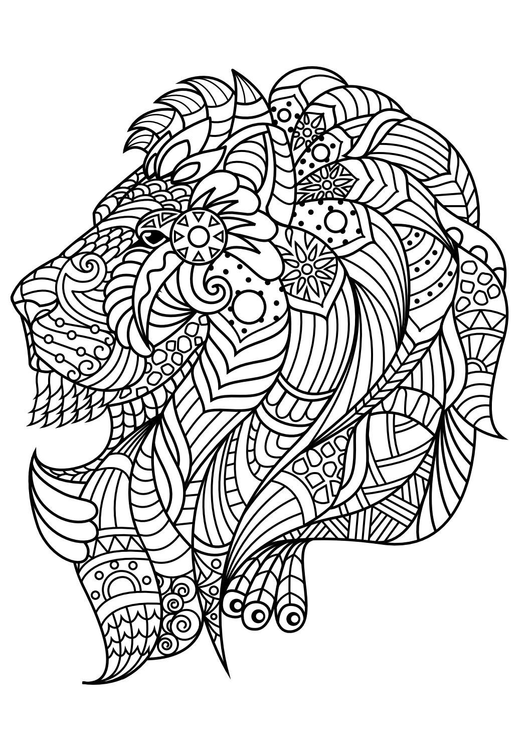 Animal coloring pages pdf | Lion coloring pages, Mandala ... | free printable coloring pages for adults animals