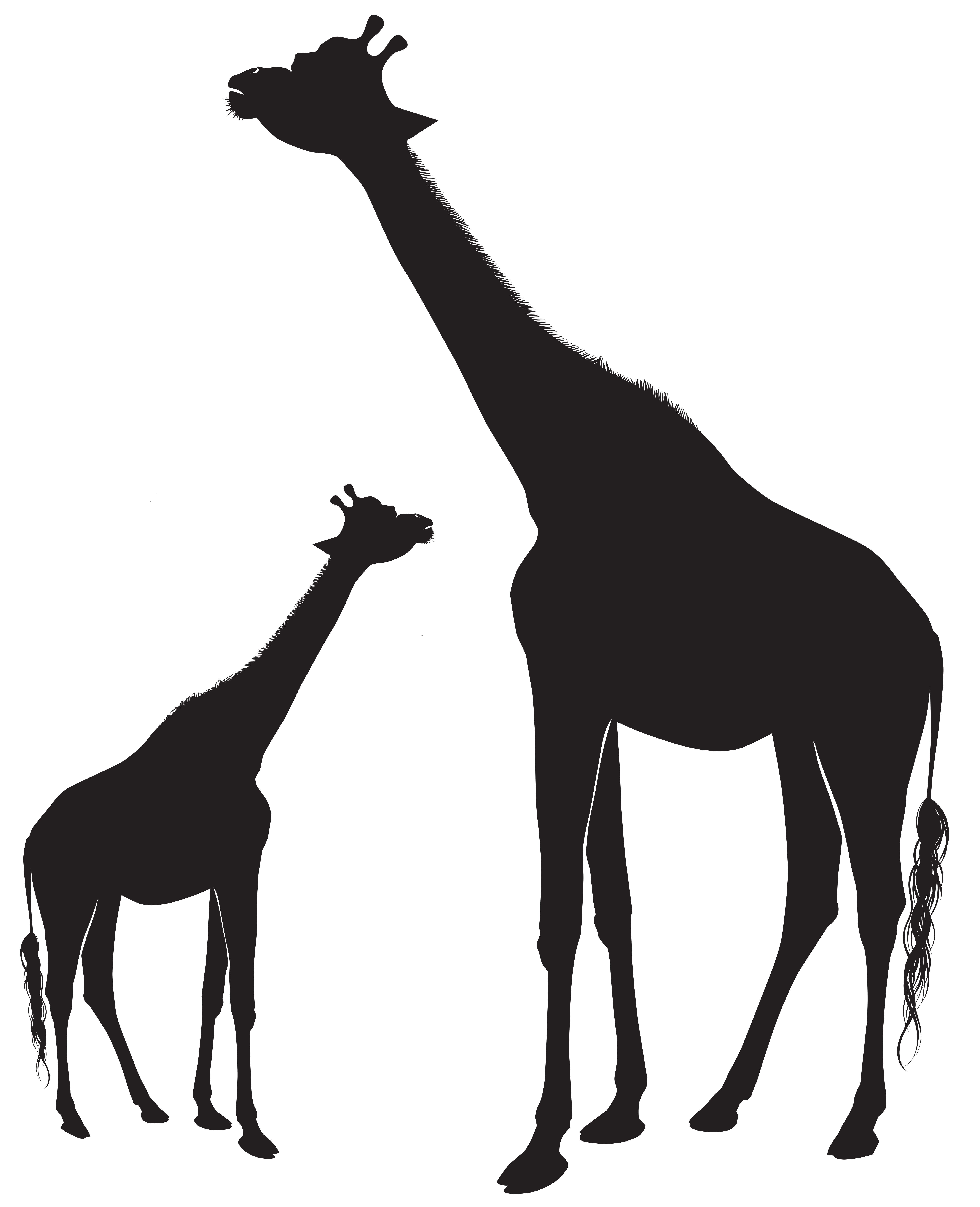 Giraffes Silhouette Png Clip Art Image Gallery