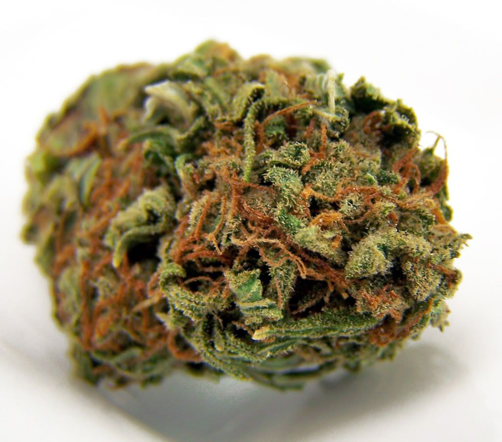 Över 1 000 bilder om Platinum Society Medical Marijuana Dispensary ...