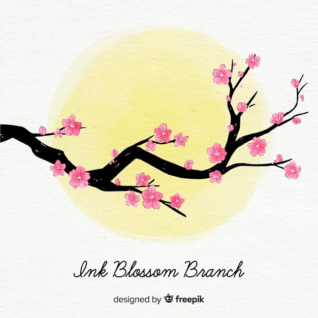 Travelgram Korea On Instagram We Have Pink Cherry Blossoms In Spring And Yellow Gingko Leaves In Fall Landscape Pictures Gingko Leaves Yellow Blossom Tree