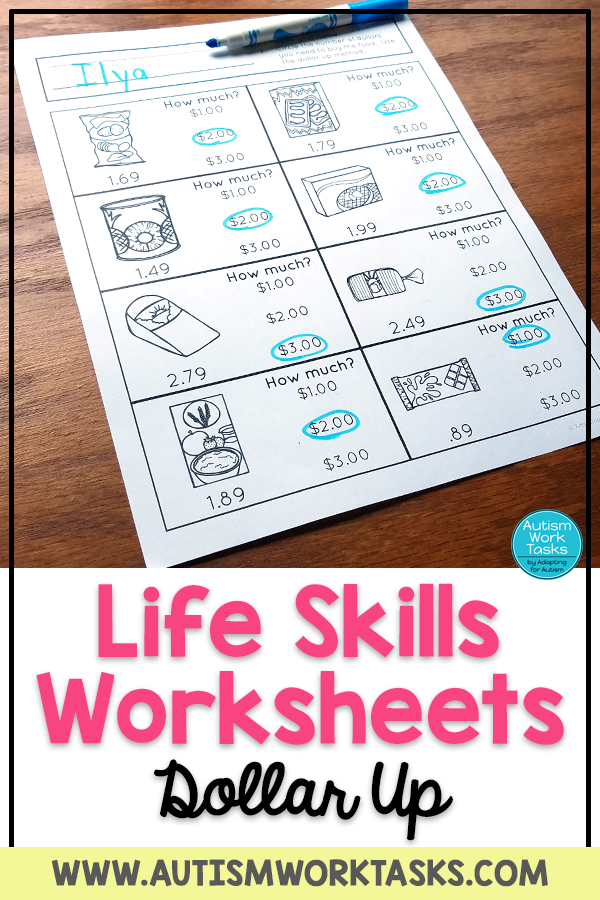 Life Skills Worksheets - Grocery Store