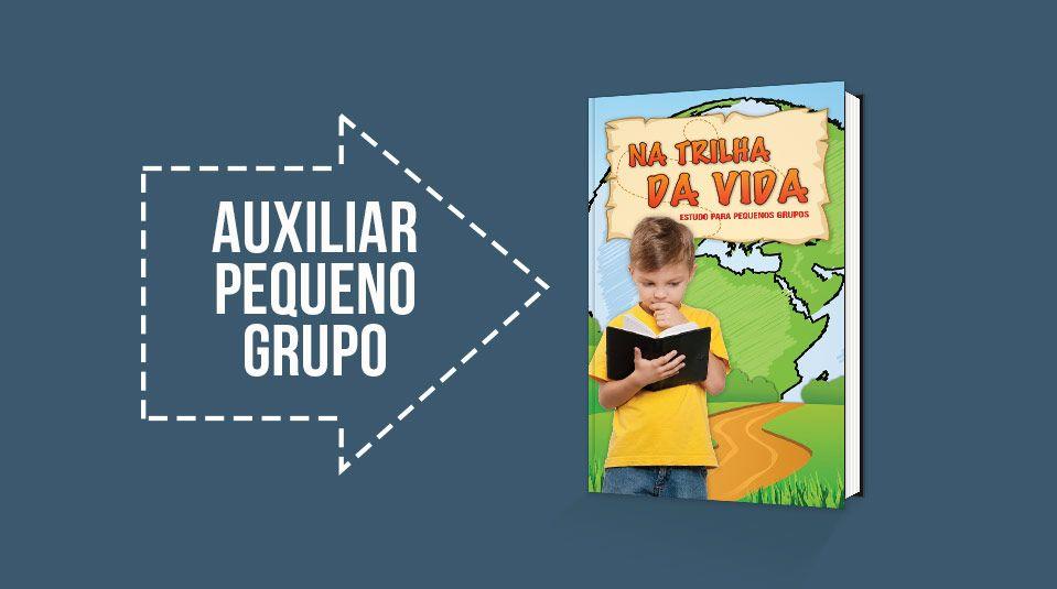 PDF com os temas e a serem abordados nas reuniões de pequeno grupo infantil para…
