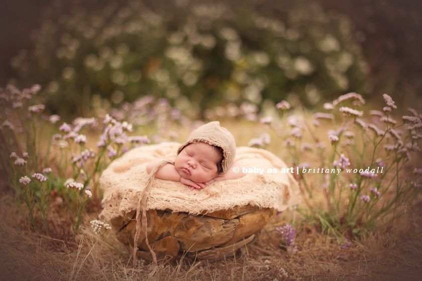Brittany Woodall - Baby as Art - Newborn Posing Props