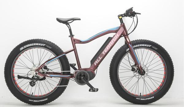 Bafang Mid Drive Motor Bike