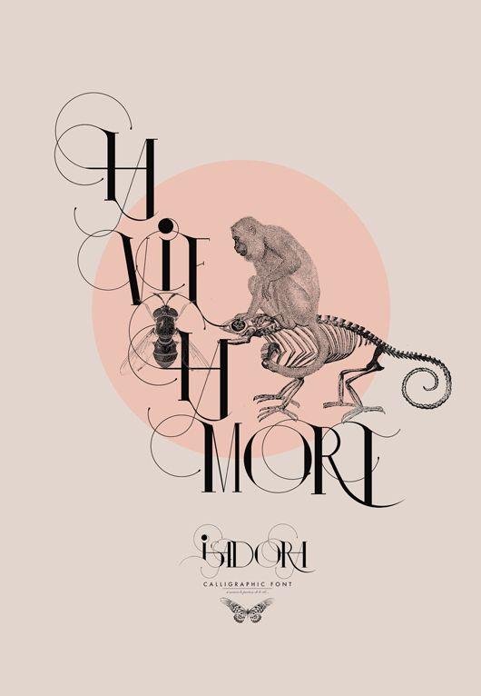 Isadora, la nueva tipografía de Dany Milles | Tipografía y Ilustraciones