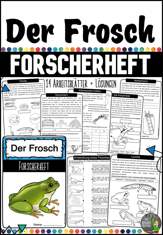 Der Frosch   Forscherheft LMPKracher20 – Unterrichtsmaterial im ...