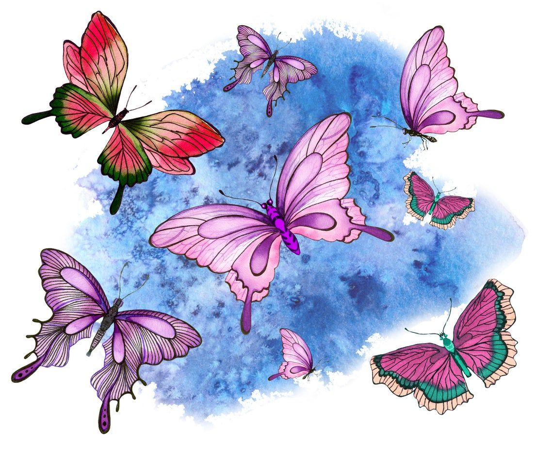 Butterfly Clipart Png Watercolor Butterfly Digital Etsy Butterfly Watercolor Butterfly Clip Art Butterfly Graphic