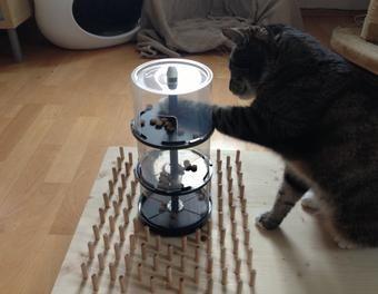 fummelbrett f r katzen katze fummelbrett katzenbesch ftigung diy alles f r die katz. Black Bedroom Furniture Sets. Home Design Ideas