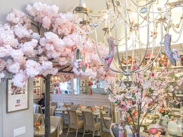 It May Be Snowing Outside But The Blossoms Are Blooming Inside The Shop We Welcome Our New Addition Of Our Cake Bake Shop Cherry Blossom Cherry Blossom Tree