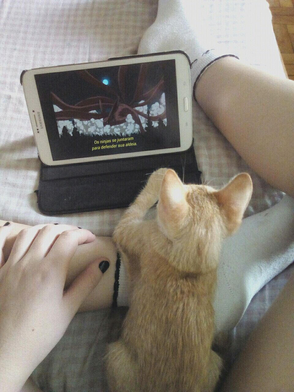 Me And My Cat Watching The Best Anime Ever Naruto 3 Ps Her Name Is Kurama Memes Engracados Memes Engracado