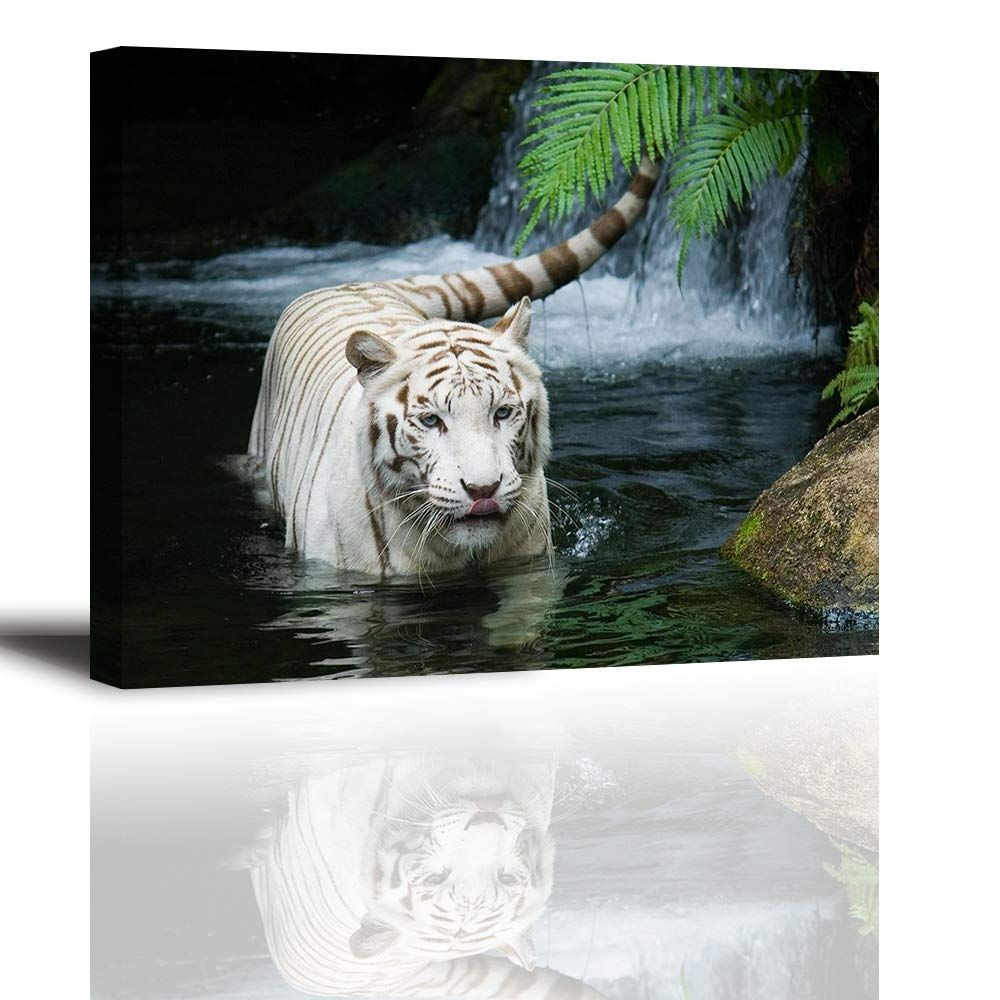 White Tiger Picture Decor For Bedroom Piy Gorgeous Wall Art Of