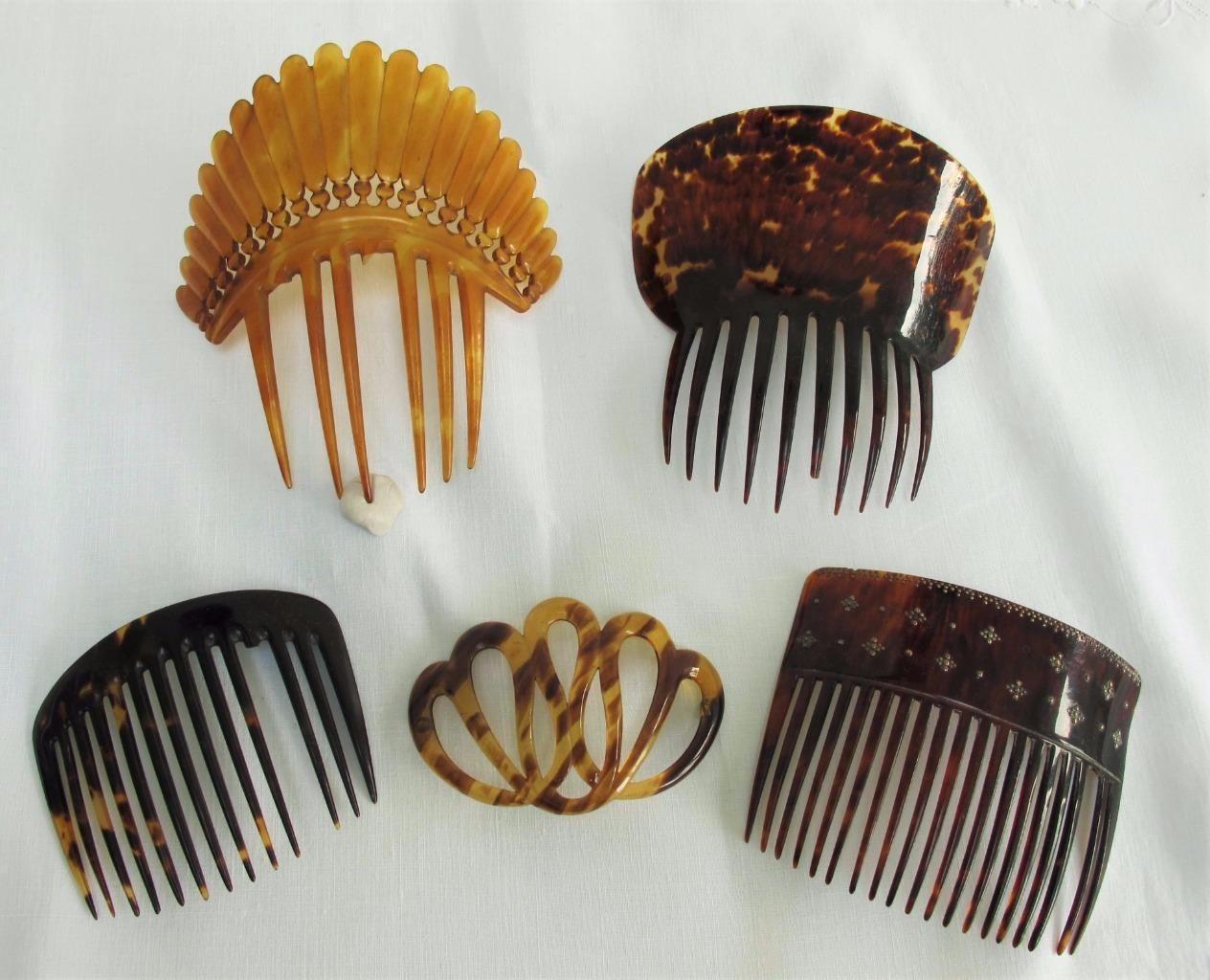 Collection of 6 Faux Tortoiseshell Celluloid Horn Hair Combs c1850 1930'S | eBay