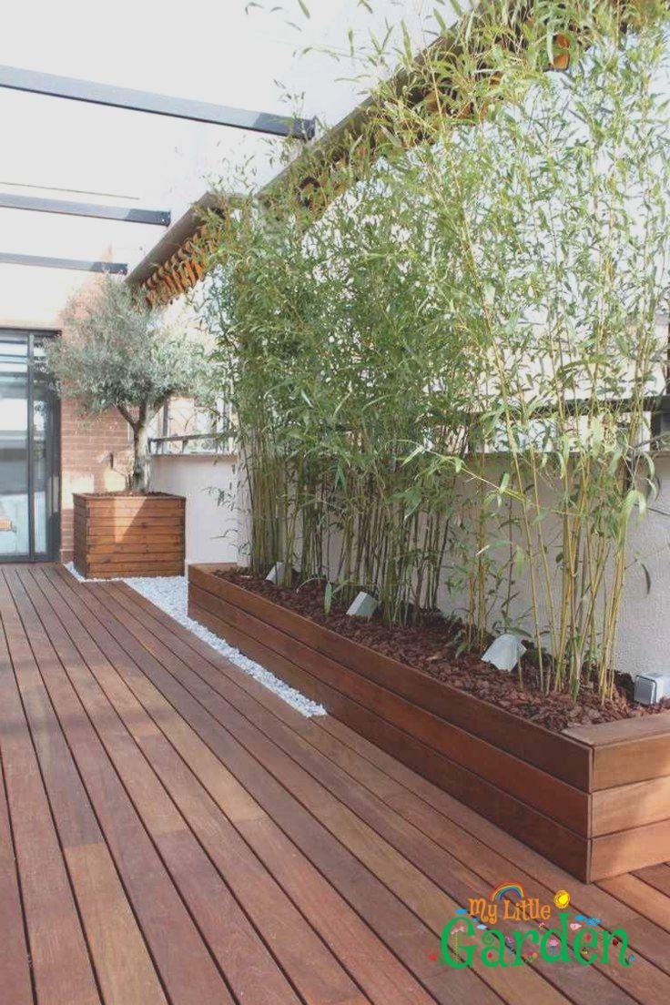 Hochbeet Fur Bambuspflanzen Mit Mulch Und Bodenleuchten