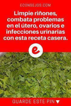 hierbas para la infección de orina