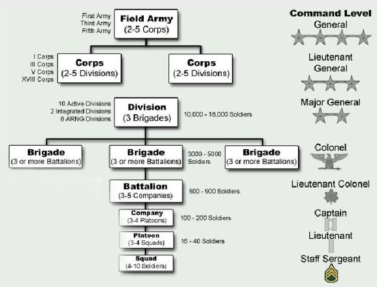 How the US    Army    Is Organized      Army    ranks     Army       structure        Military    ranks