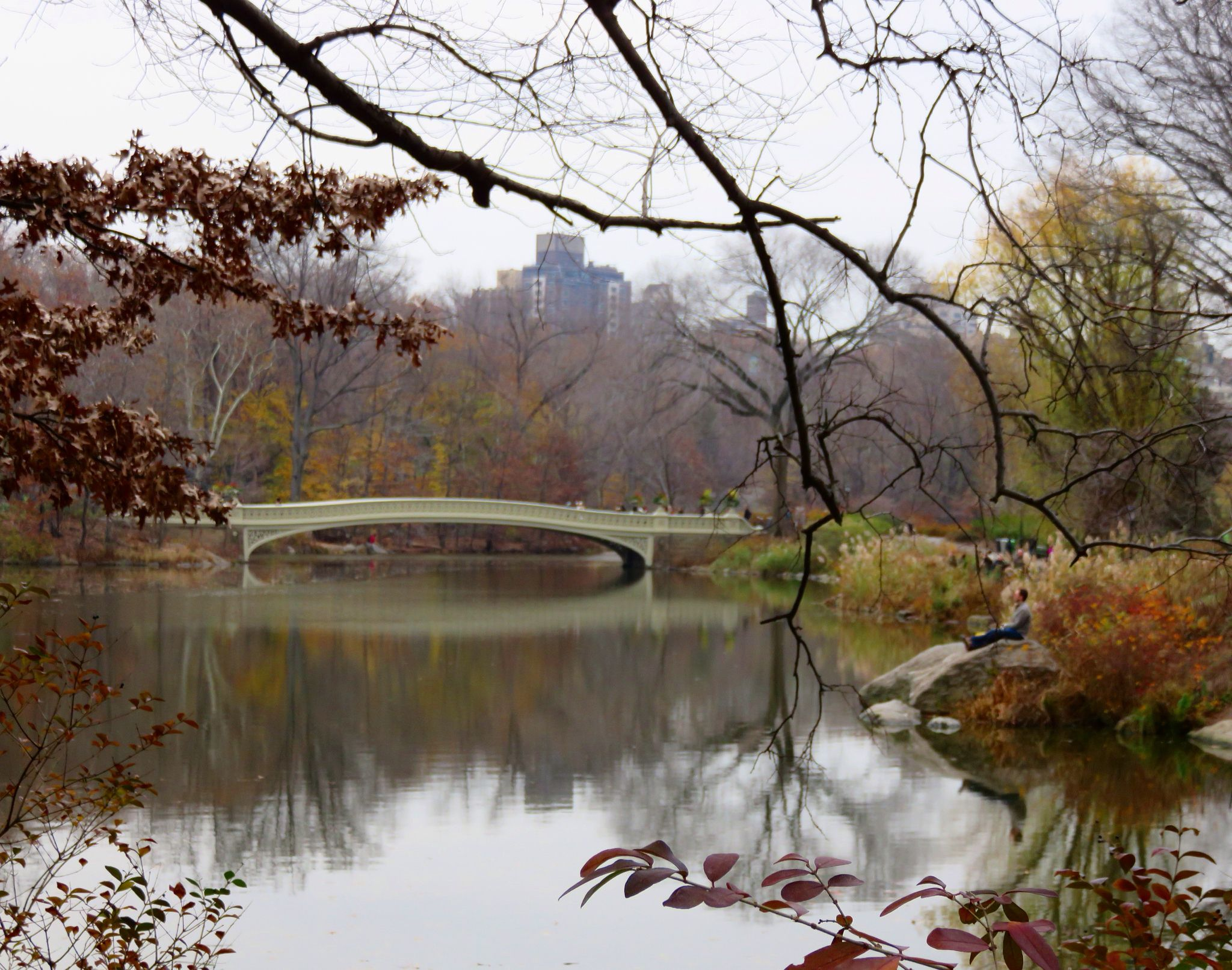 Central Parkin New York