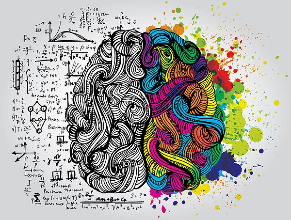 Creative Concept Of The Human Brain by Kirasolly