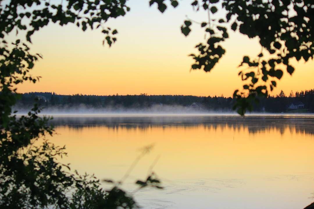 ×× waiting these summer nights ��  #summer #summerinfinland #visitsuomi #suomi #finland #iisalmi #night #summernight #kesä #sunset #sun #sky #lake #forest #trees #nature #naturelovers #photography #heinäkuu #2014 #canon #maisema #landscape #fog http://tipsrazzi.com/ipost/1520466648858661077/?code=BUZyFyCDJDV