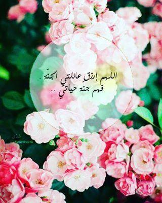 Emraa On Instagram عائلتي سر سعادتي العائلة الحب السعادة دنيا امرأة كويت كويتيات كويتي دبي اﻻمارات السعوديه قطر Kuwait Kuwait Foto Muren Foto