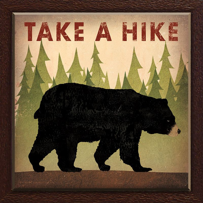 Star Creations Take a Hike Bear by Ryan Fowler Framed Graphic Art ...