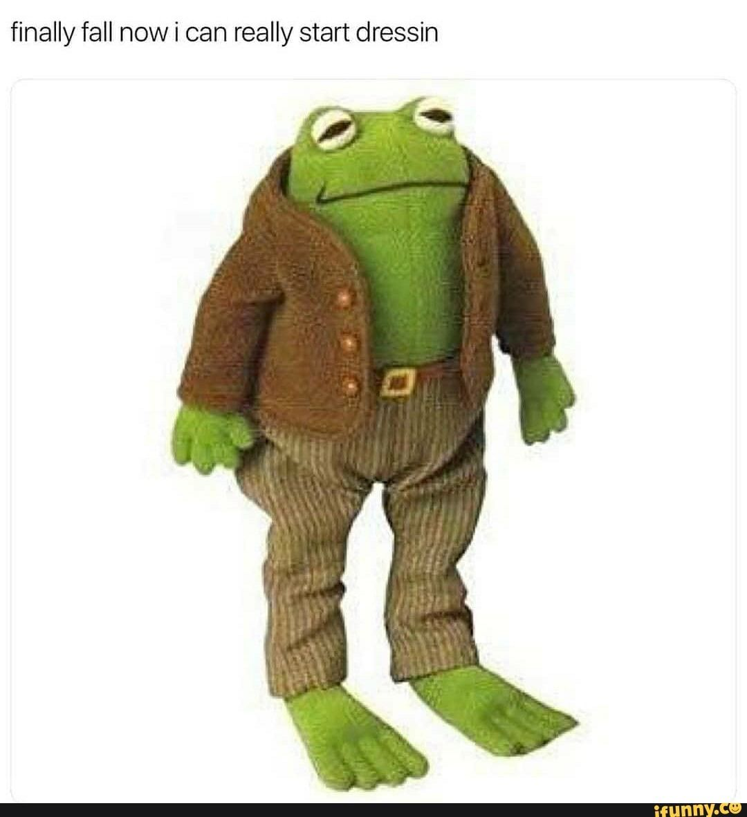 Finally Fall Now I Can Really Start Dressin Ifunny Frog And Toad Cute Frogs Frog