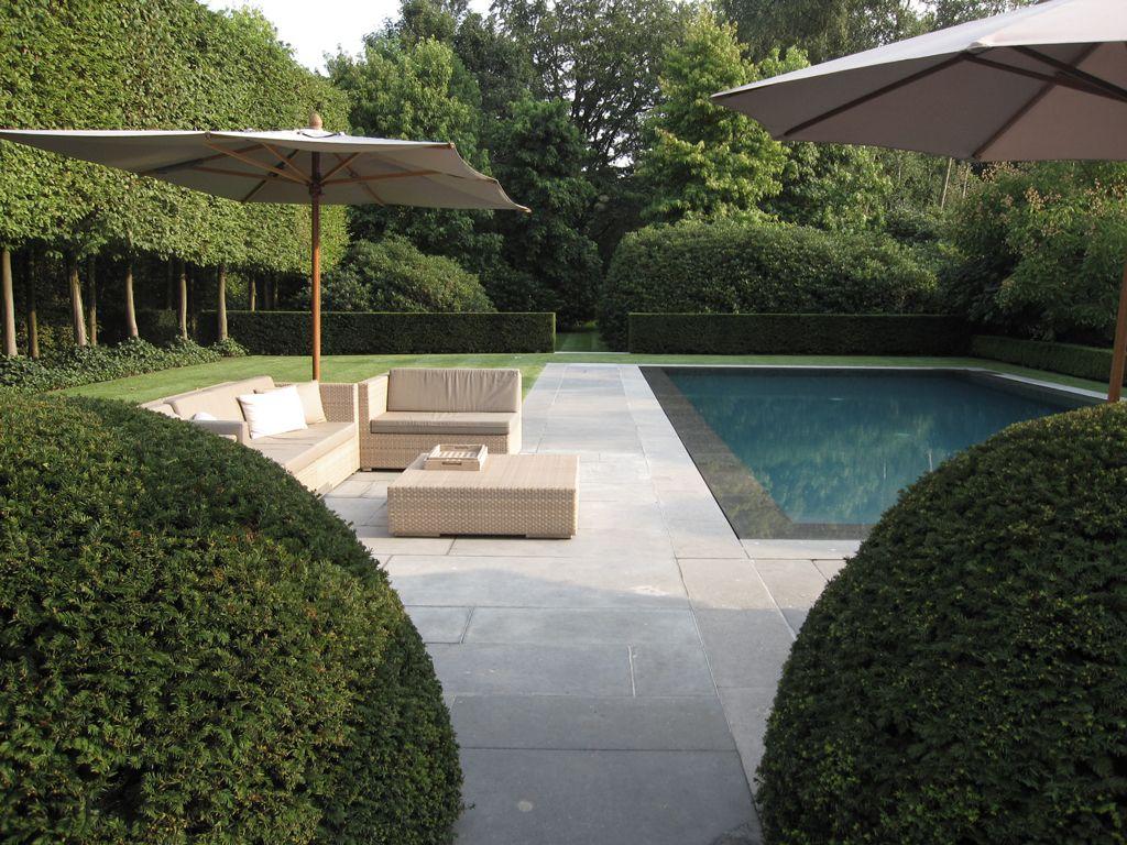 Hedendaagse tuin: ontwerp rond prachtig zwembad avantgarden