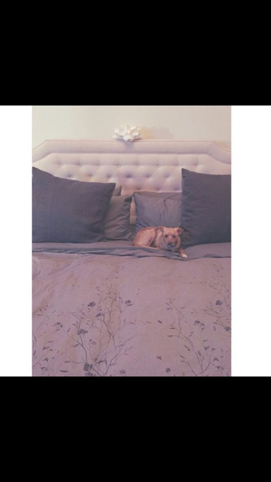 New Bed Room Inspired Ariana Grande Bedrooms Designs In 2019