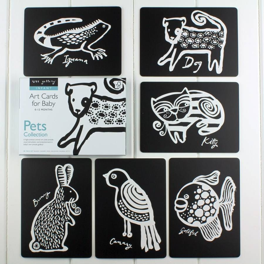 Black And White Baby Flash Card Pet Collection | Nest products and ...