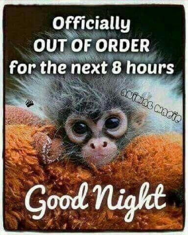 Good Nite Funny Good Night Night Quotes Good Night Quotes