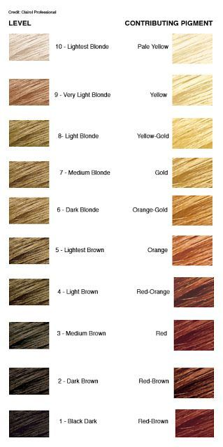 hair color levels If you have darker hair and wish to lighten your