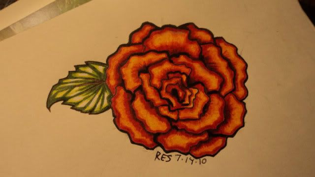 Scarlet Begonias Tattoo Begonia Tattoo Tattoo Illustration Begonia Tattoos