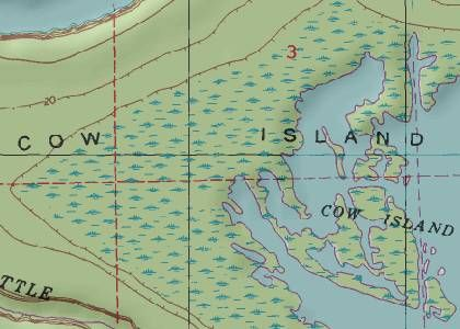 Cow Island, Louisiana. Barely a dot on a map but my family ...