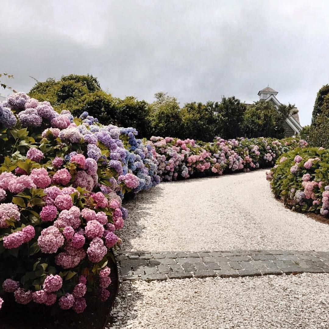 """Nantucket Prime!"" Repost @amy_stone | Garden structures ..."
