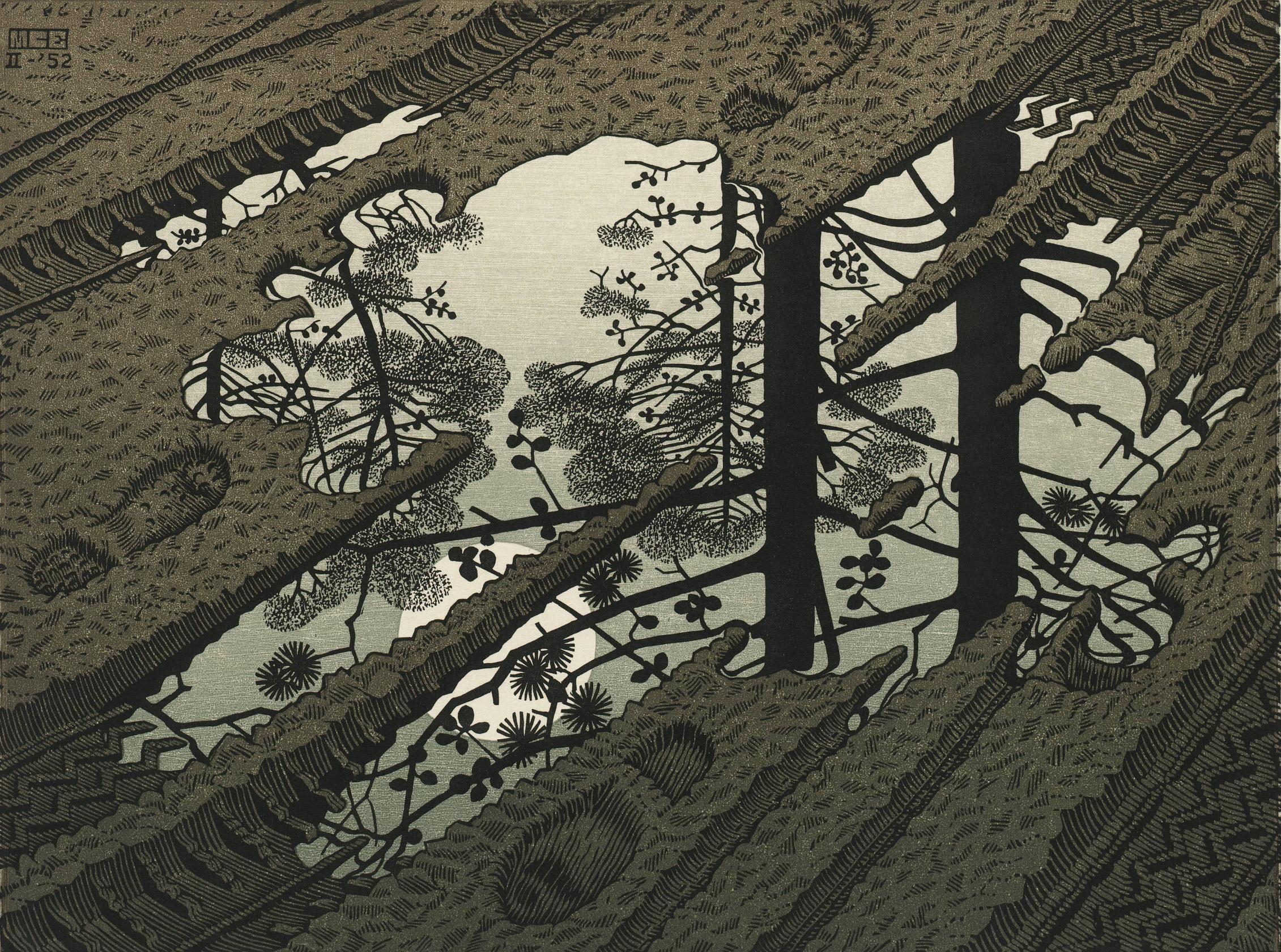 M.C. Escher- Puddle [2261 x 1681]