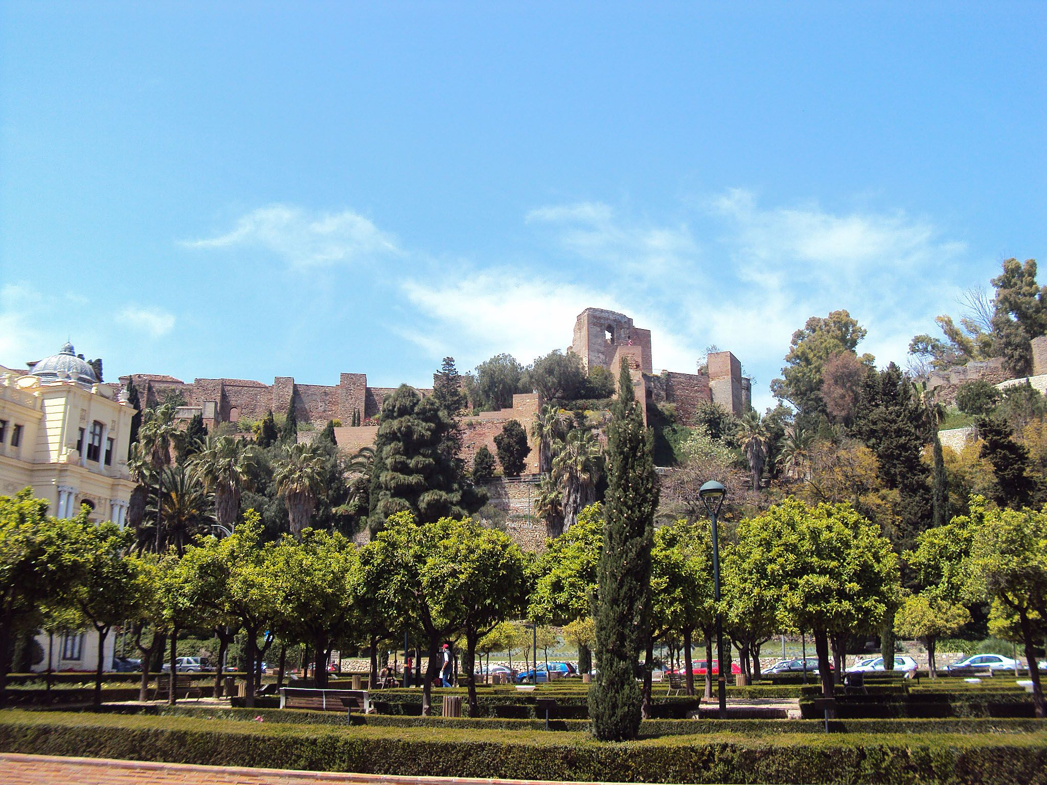 Malaga´s Alcazaba and Puerta Oscura Garden, plenty of a wide variety of roses from all around the world (Costa del Sol - Andalusia, Spain)