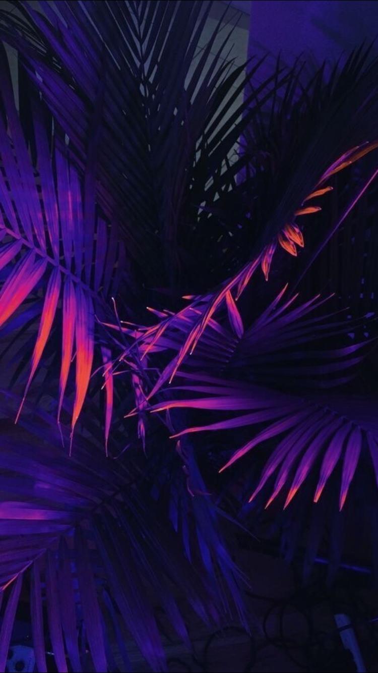 purple neon widow wallpaper - photo #47