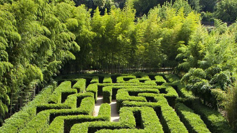 Plongée dans le plus grand labyrinthe végétal du monde   Pinterest ...
