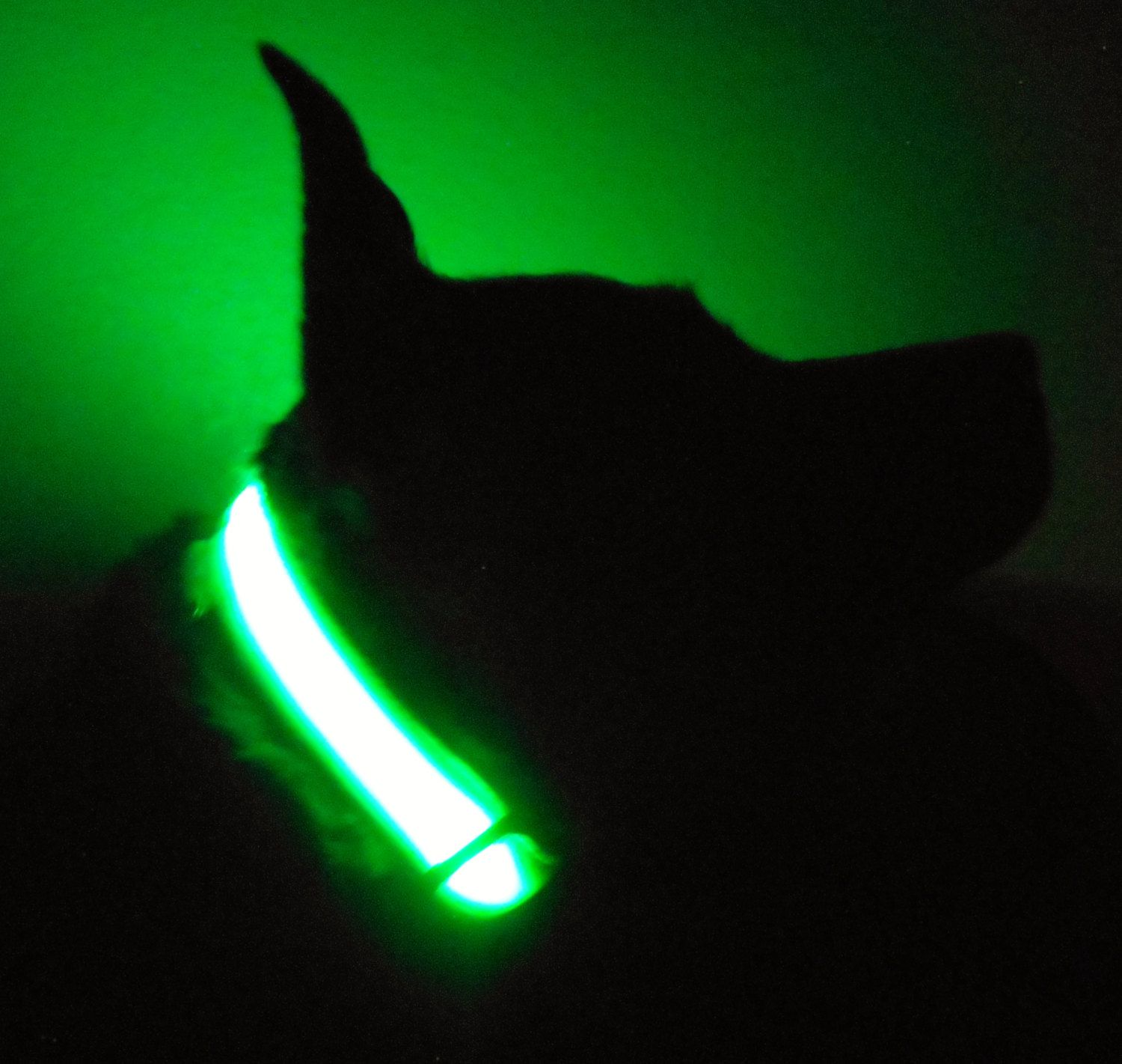 necklace green ae rechargeable product safety soft night silicone up length good collar waterproof pet usb dog adjustable light led flashing