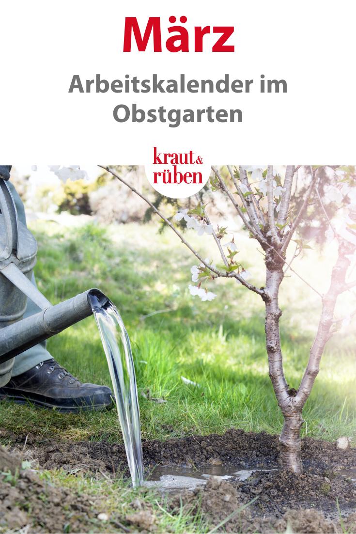 Pin Auf Obstgarten Arbeitskalender
