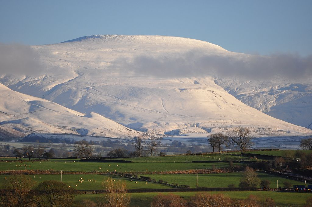 Pin by nicola wilding on hills Caledonia, Natural