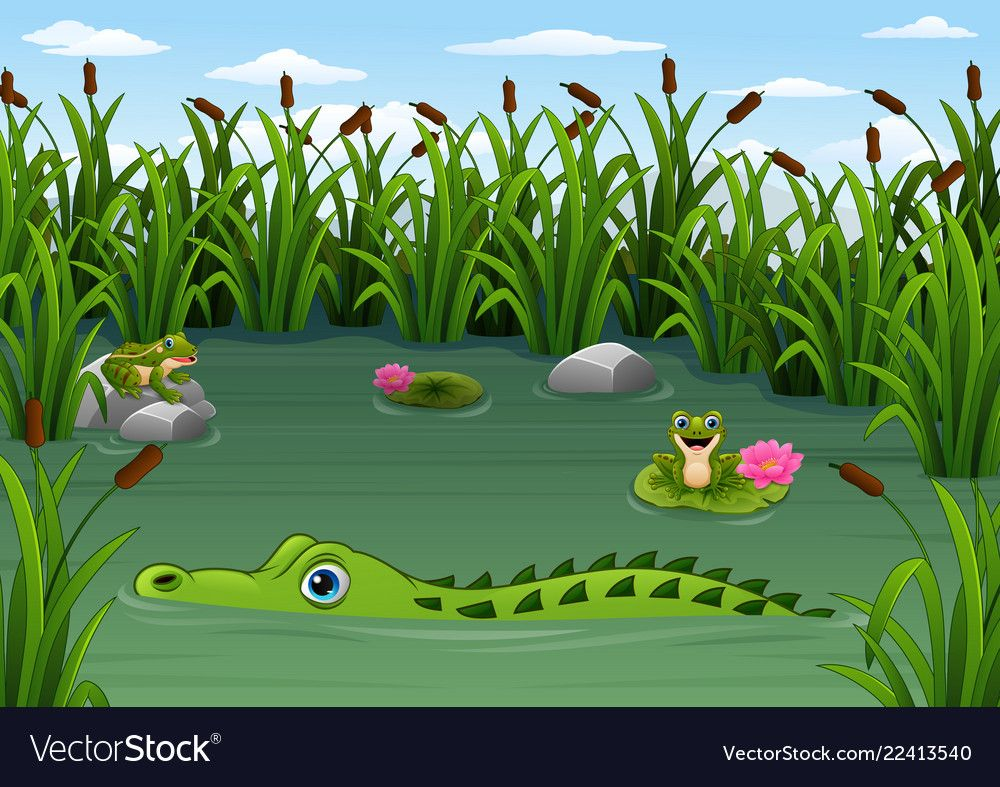 Illustration Of Cartoon Alligator And Frogs In The Pond Download A Free Preview Or High Quality Adobe Illustrator Ai Eps P Pond Drawing Pond Nature Pictures